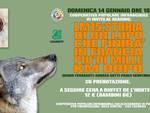 Storia di un lupo, reading alla Coop Infrangibile