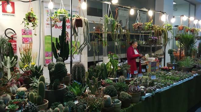 Apilmell e Seminat a Piacenza Expo: la natura in vetrina