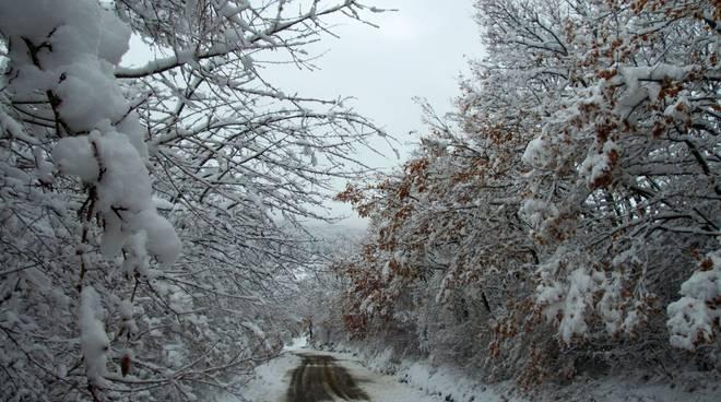 Neve a marzo a Morfasso