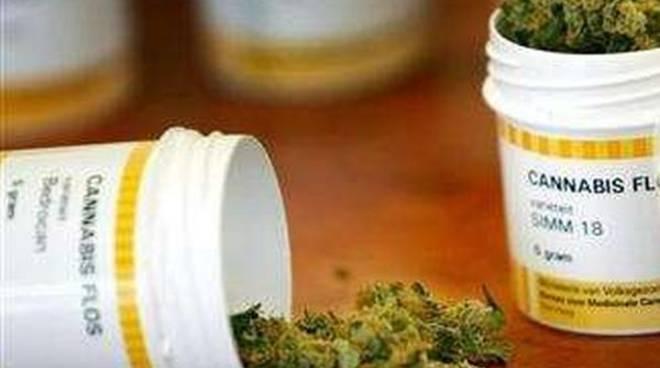 Farmaci cannabinoidi