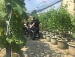 """La visita ai laboratori di Agraria di """"Universi"""""""