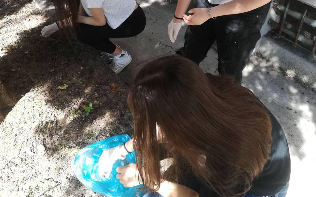 Raccolta rifiuti degli studenti