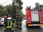 Maltempo in città, cade albero a Barriera Torino