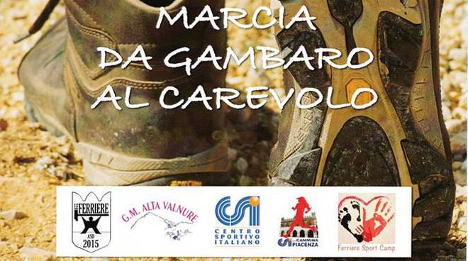 Marcia Gambaro