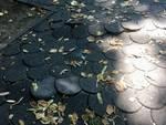 La situazione ai Giardini di via Beverora