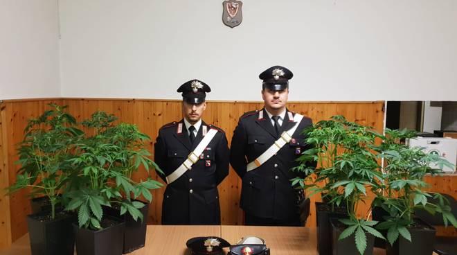 carabinieri maria a Vigolzone