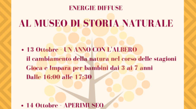 Energie Diffuse - Aperimuseo