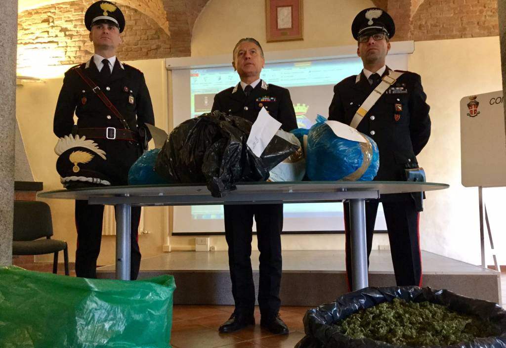 marijuana legale sequestrata dai carabinieri