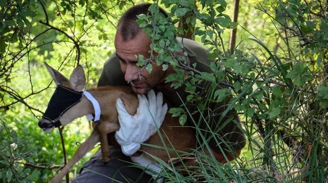 Piacenza Wildlife Rescue Center