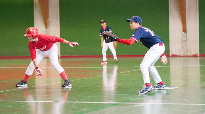 Baseball Indoor