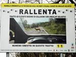 cartello contro animali strada