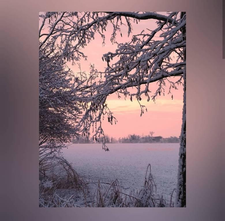La prima nevicata del 2019