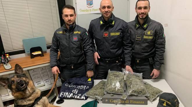 foto sequestro marijuana della Finanza