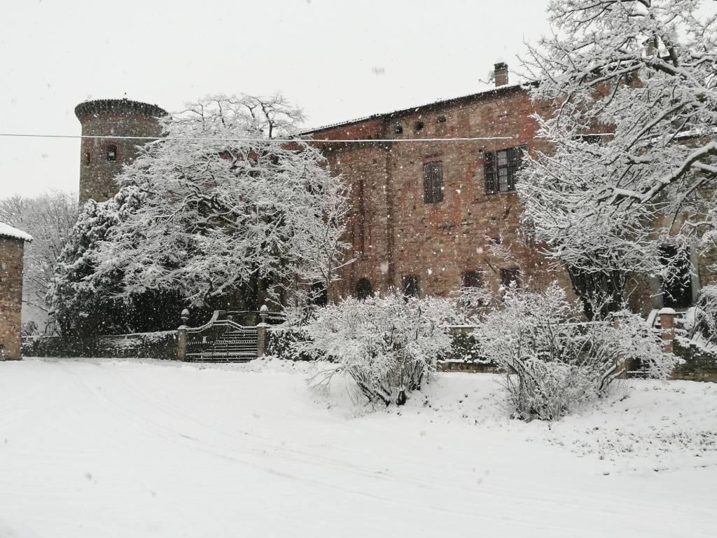 nevicata a Piacenza 1 febbraio