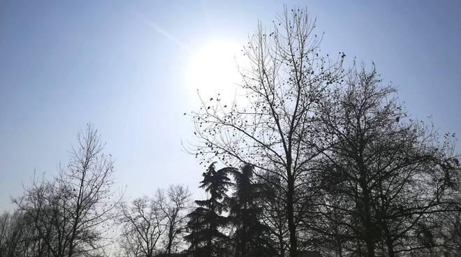 sole di inverno