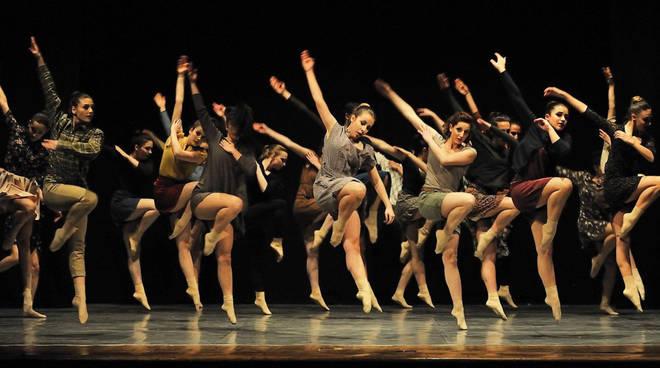Danza Insincronia