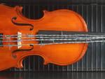 Il violino con il filo spinato
