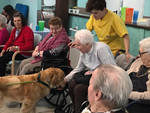 Pet therapy Istituto Longobucco