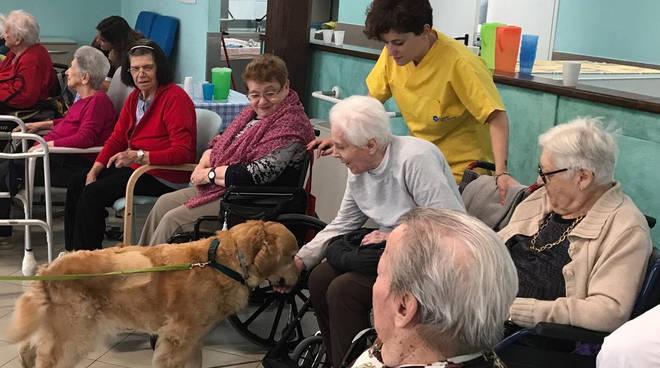 Pet therapy Istituto Longobucco