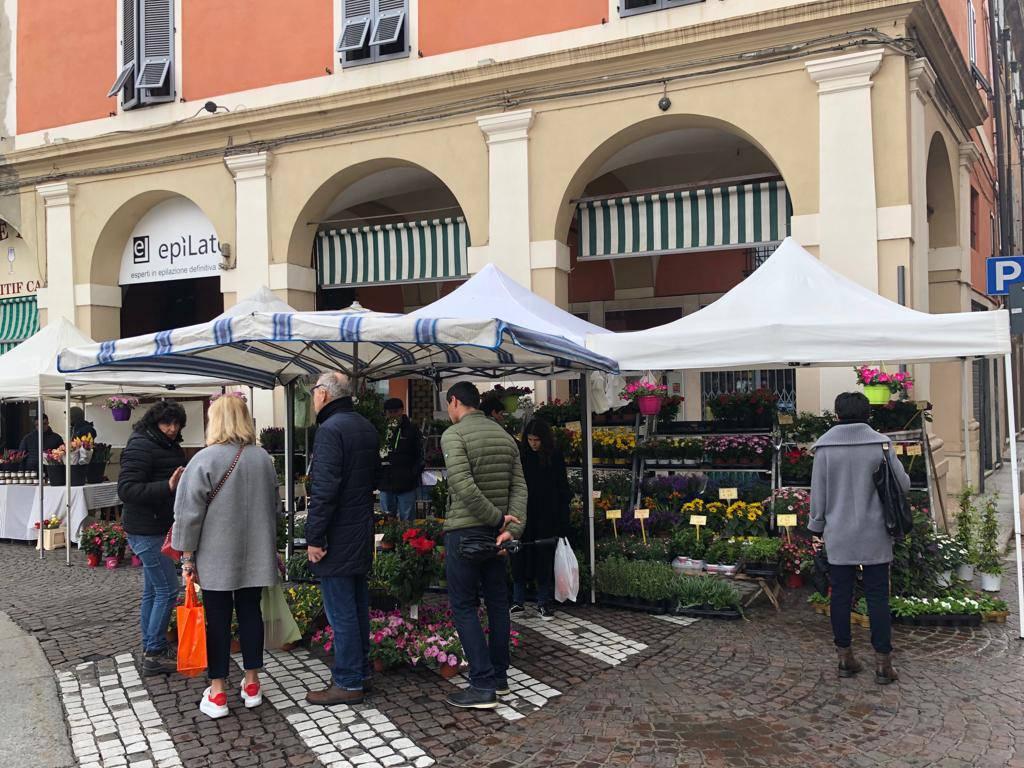 Piacenza in fiore