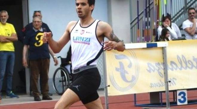 David Palladini