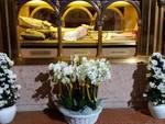 L'urna del Beato Scalabrini in Duomo a Piacenza
