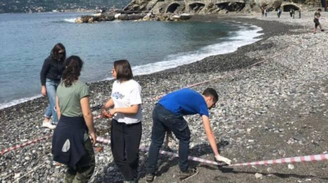 studenti spazzini delle spiagge