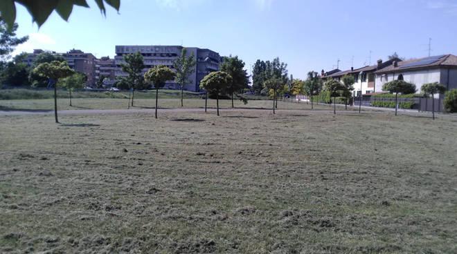 Verde pubblico taglio erba