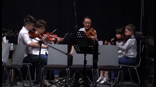 orchestra Amadeus