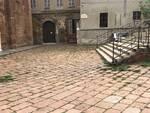 erbacce in San Giovanni in Canale