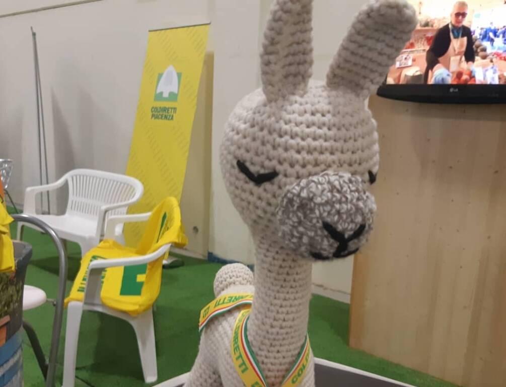 Alpaca International Show a Piacenza Expo