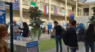 International Day in Cattolica