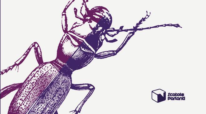 La formica sghemba