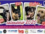 Il calendario 2020 Oipa