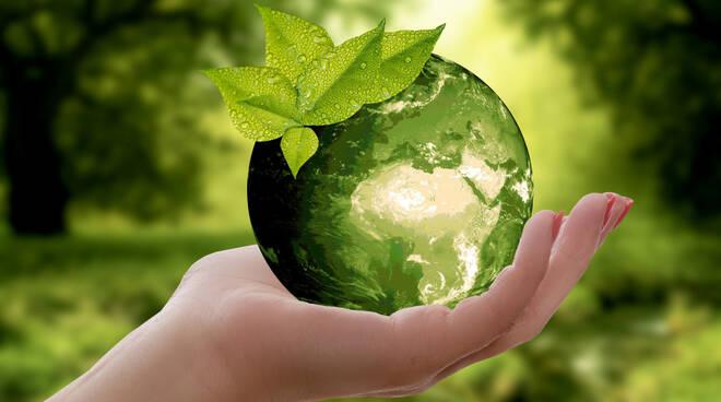 terra ambiente sostenibilità