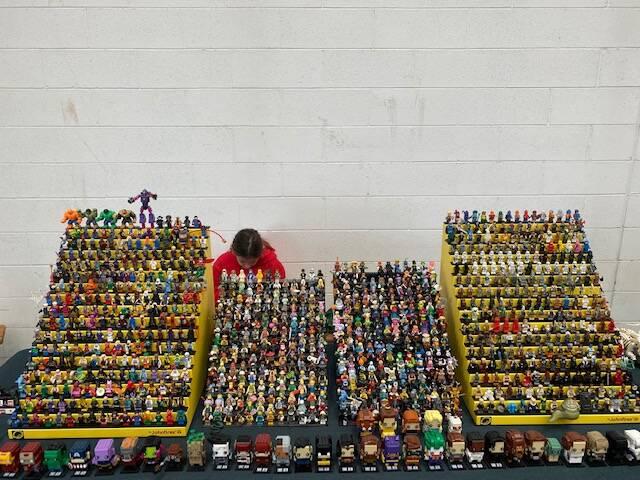 Una giornata di Lego a Piacenza Expo