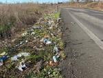 I rifiuti abbandonati in via Tirotti a Piacenza