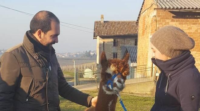 Matteo Rancan con Gloria Merli e un alpaca