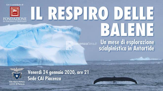 Il respiro delle balene