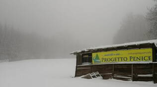 Neve sul Penice