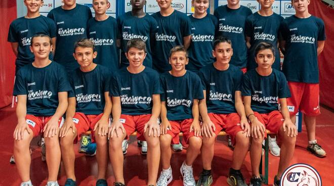 Assigeco basket