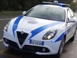 polizia locale alseno