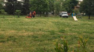 Lavori di sfalcio erba