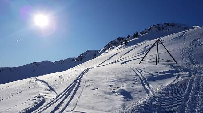 Neve sci