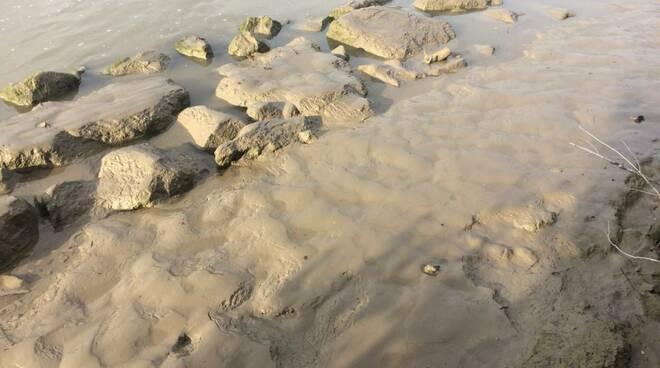 Il fango depositato sul greto del Trebbia