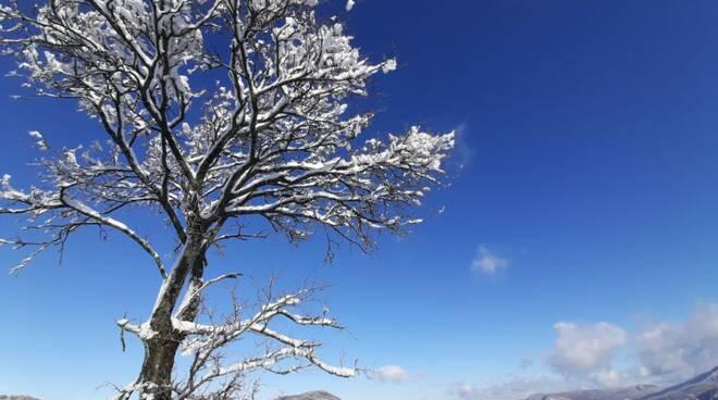 Quando il sole sposa la neve, la magia nelle foto
