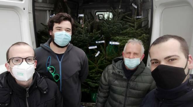alberi plastic free