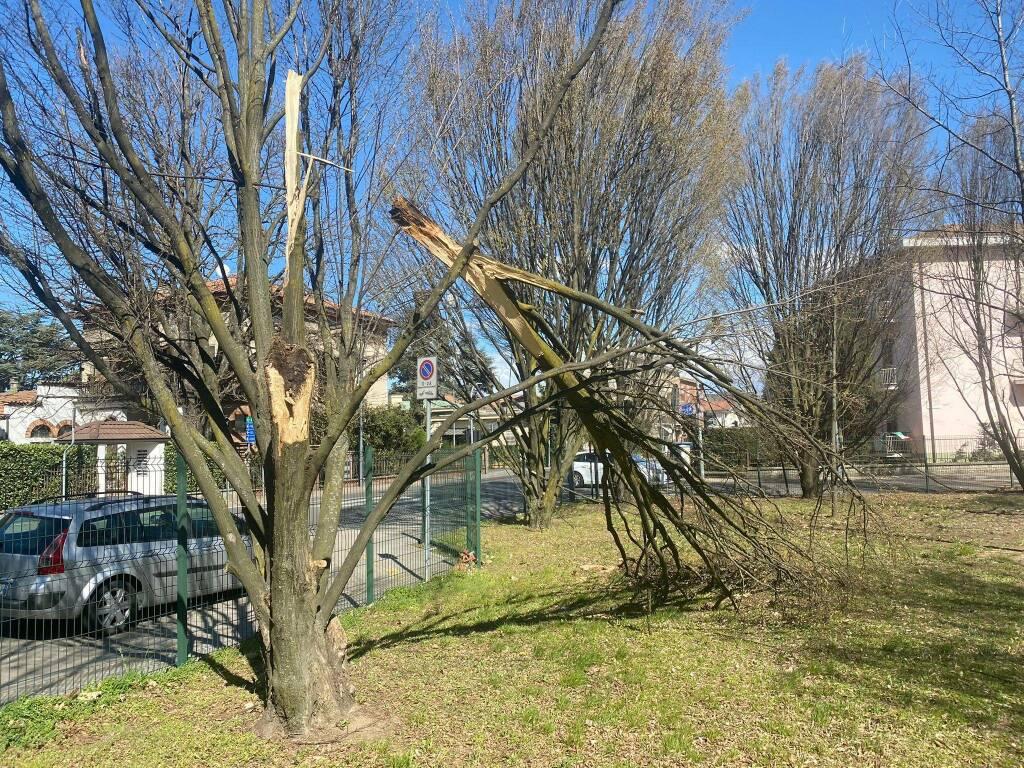 I danni del vento a Piacenza e provincia