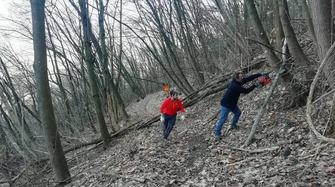 pulizia sentieri Cinghiali Valtidone