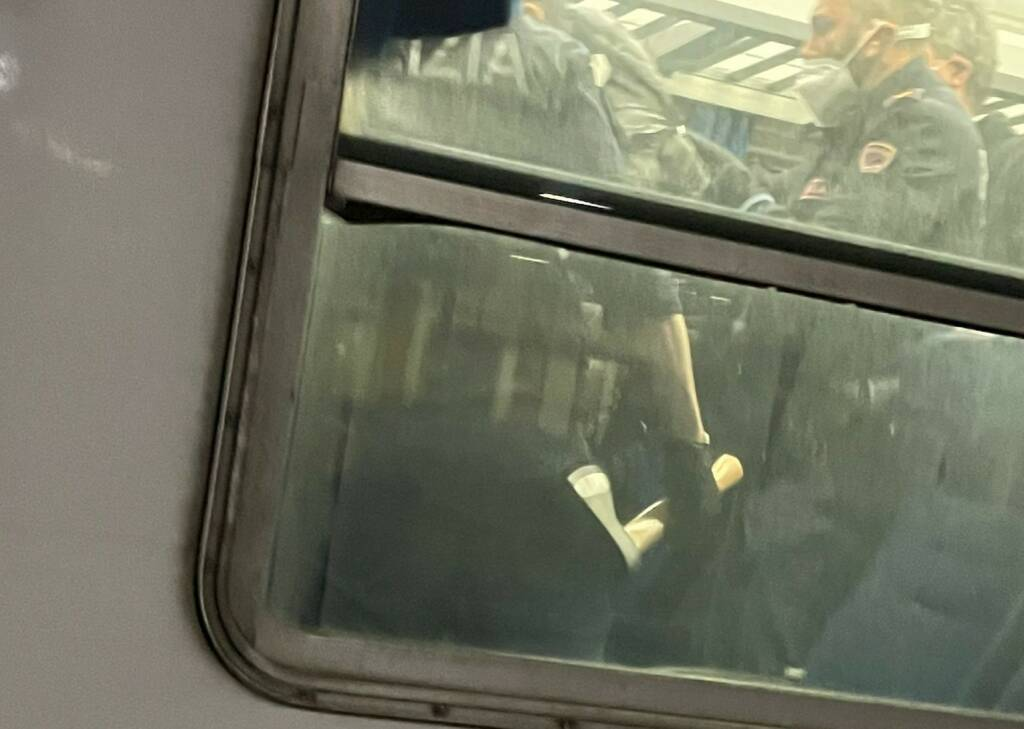 aggressione ascia treno